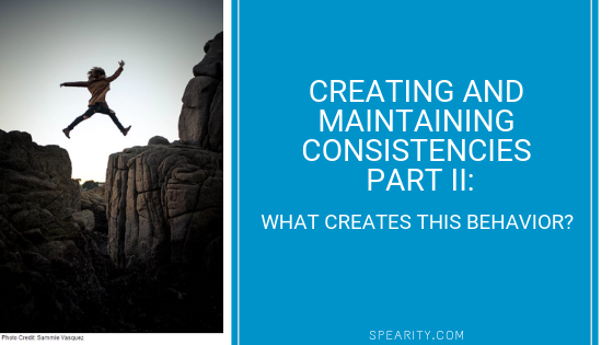 Creating and Maintaining Consistencies  Part II – What?